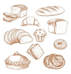 Pastry or bakery food and bread sketch vector