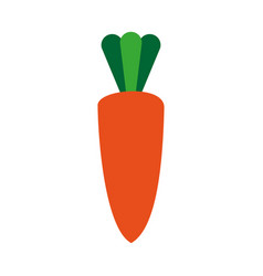carrot healthy vegetable icon vector image vector image