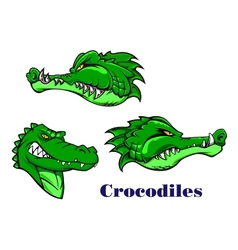 Cartoon crocodile and alligators characters vector image vector image