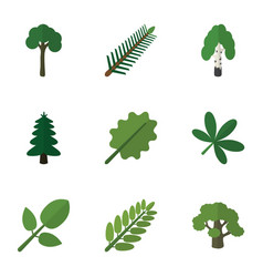 Flat icon bio set of park maple timber and other vector