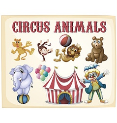 Circus animals vector