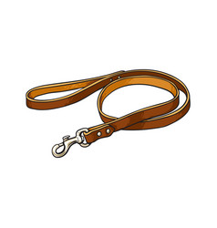 Simple pet cat dog brown leather leash with vector