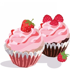 Raspberry and Strawberry cupcakes vector image vector image
