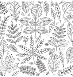 Set of outline leaves vector