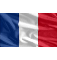 French Flag waving vector image vector image