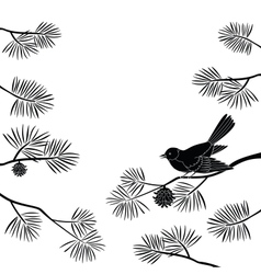 Titmouse on pine branch cutout vector image