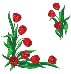 Red tulip corner vector