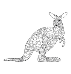 Kangaroo coloring book for adults vector