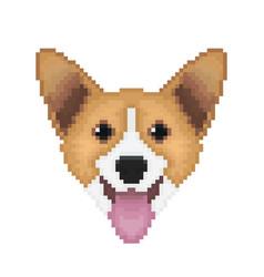 pembroke welsh corgi dog head in pixel art style vector image