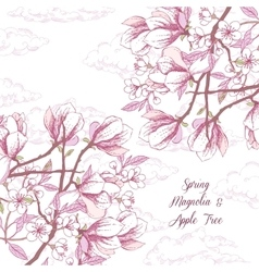 Background with magnolia and apple tree vector