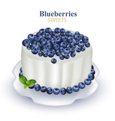 blueberries cake realistic on vector image vector image