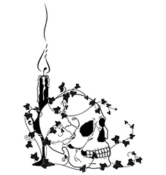candle skull and ivy vector image vector image