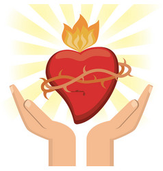 Hand with sacred heart jesus christ image vector