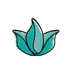 leaves natural decoration icon vector image vector image