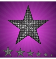 Silver star with elements of sequins vector