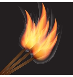 Three burning match on black background vector image