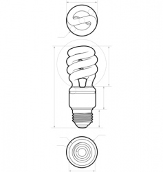 compact flourescent drawing vector image vector image