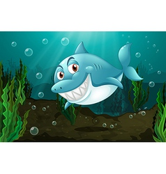 A smiling shark vector image