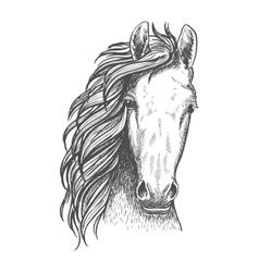 American wild west mustang sketch icon vector