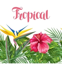 Seamless border with tropical leaves and flowers vector image vector image