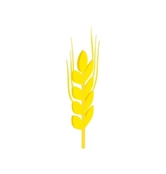 Two stalks of ripe barley isometric 3d icon vector