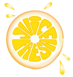 orange fruits fresh juice vector image