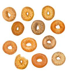 Hand drawn bagels vector