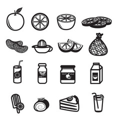 Orange fruit and product icons set vector