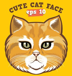 cute cat head vector image vector image