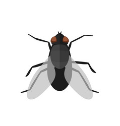 fly icon in flat style vector image vector image
