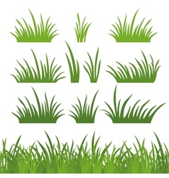 Green grass seamless and set vector image vector image