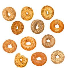 Hand drawn bagels vector image vector image