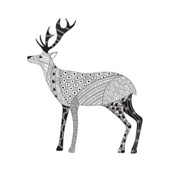 hand drawn funny deer in zentangle style vector image