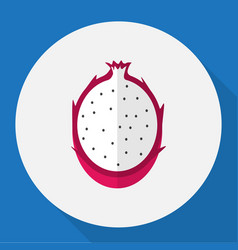 Of fruits symbol on dragon vector