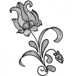 hand drawn floral design element vector image