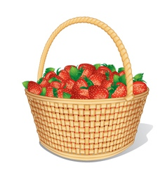 Strawberry basket vector