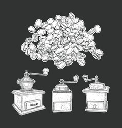 Coffee mill set and coffee beans isolated vector