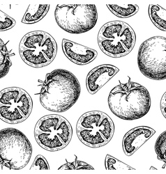 tomato seamless pattern drawing Isolated vector image