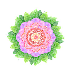 watercolor flower abstract mandala vector image vector image