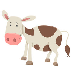 calf farm animal character vector image
