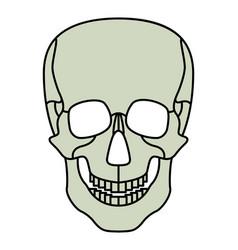 Cartoon skul icon vector
