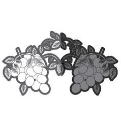 Grayscale silhouette with two bunch of grapes vector