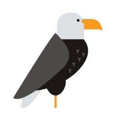North american bald eagle raptor wildlife bird and vector