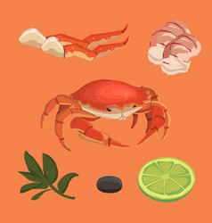 Cartoon crab food collection omar set vector