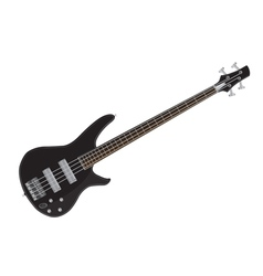 Electric bass guitar images vector