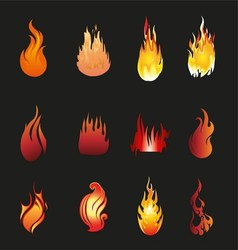 Flame Icons vector image