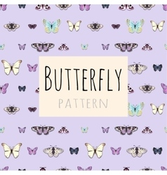 Samples of butterflies with space for text vector