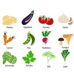 Vegetable icons with title vector