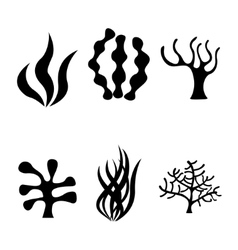 black seaweed icons set vector image