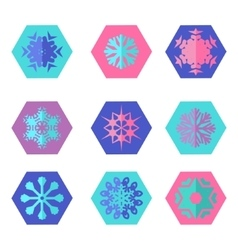 Collection of different snowflakes vector image vector image